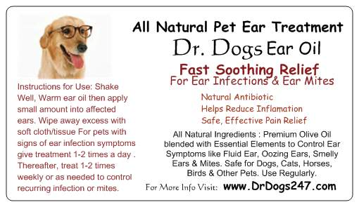 Natural Ear Infection Treatment Dogs